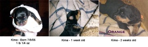 1 Kima Growing Up